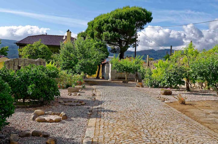 Retreat in the Countryside: Zen Vouga