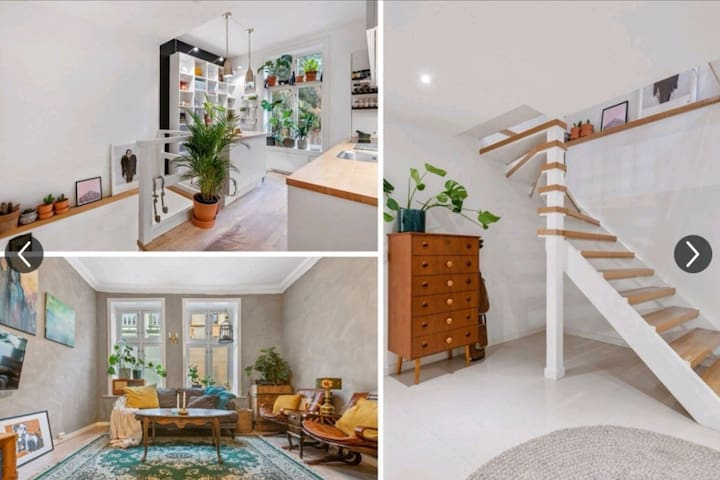 Spacious apartment in food and shopping district