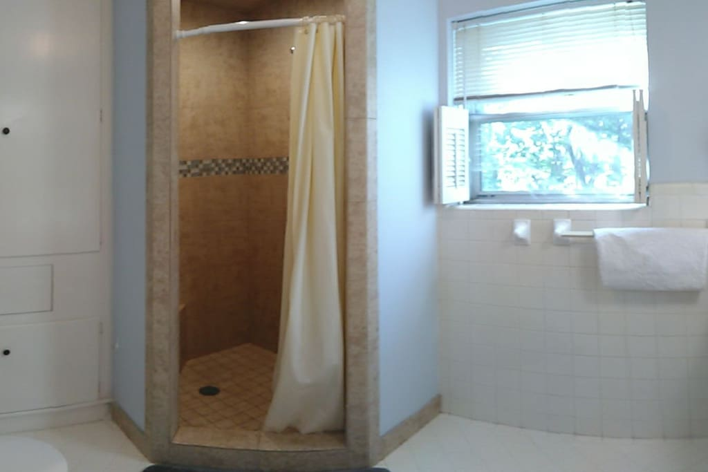 Private bathroom with stand up shower