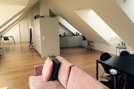 134 sqm. brand new etablisted Penthouse apartment. - Charlottenlund - Apartamento