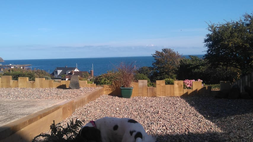 Seaviews and stargazing - Whitehead - Bungalow