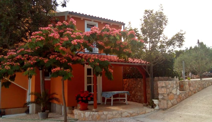Holiday house Vinjerac by the sea