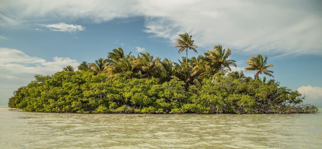 Beach House in the SIAN KA'AN Biosphere - Javier Rojo Gómez - 단독주택