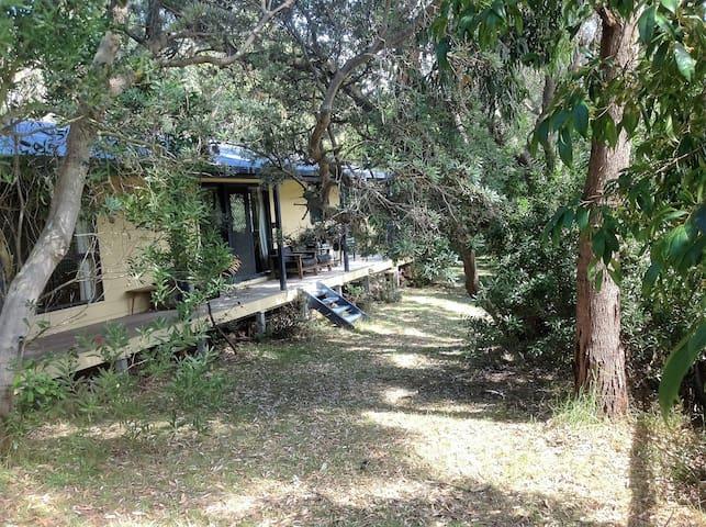 Cosy coastal cottage - Venus Bay - Loma-asunto