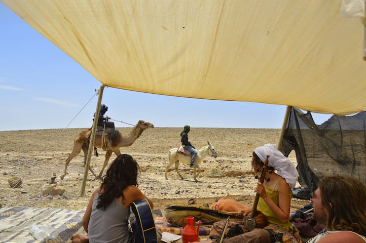 *Yaaa welcome to the desert*/Eco tours/shared tent