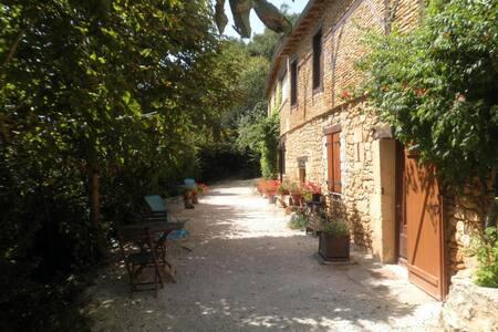 Gite 8 pers Lascaux, piscine chauffée, parc &wifi - Montignac - Natur-Lodge