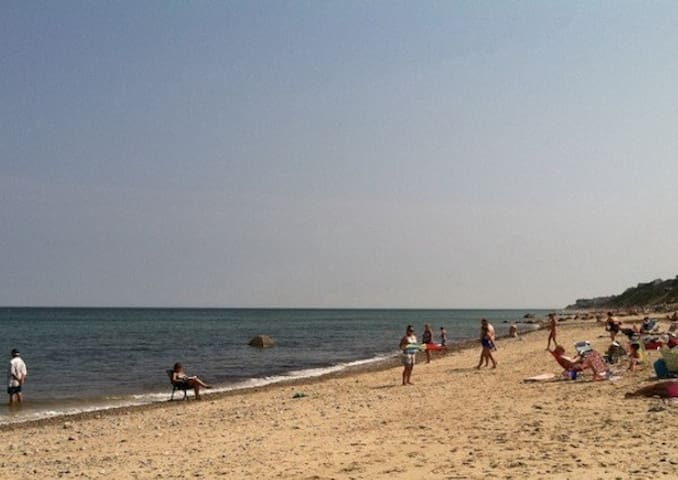 The beach in daytime