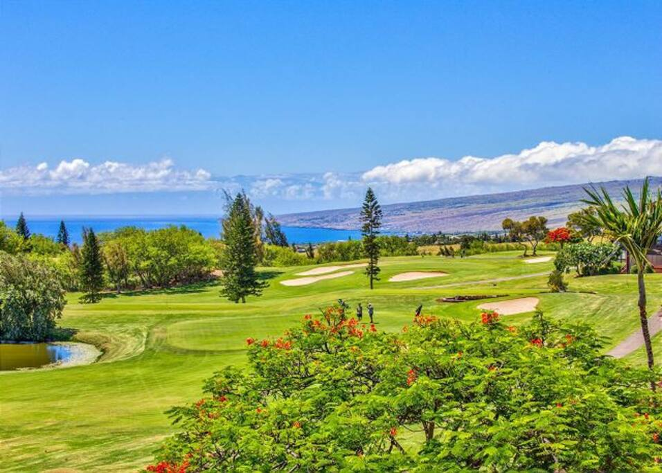 Gold Course and Ocean Views