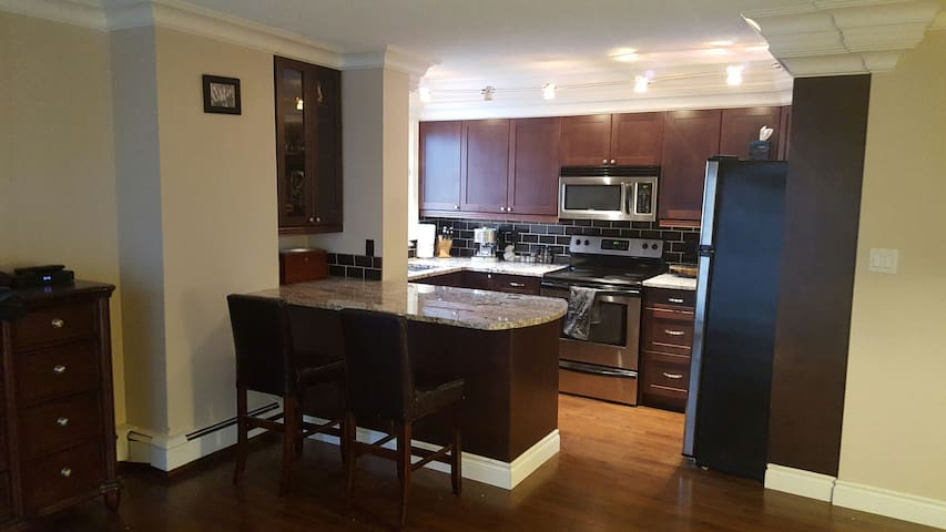 Beautiful Spacious Luxurious Condo - Edmonton - Apartment