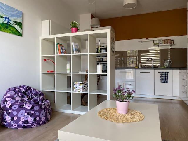 A COZY Apartment in Suburb of Bratislava