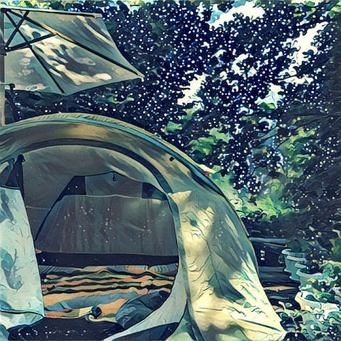 Палатка в саду под звёздами - Икша - Tenda de campanya