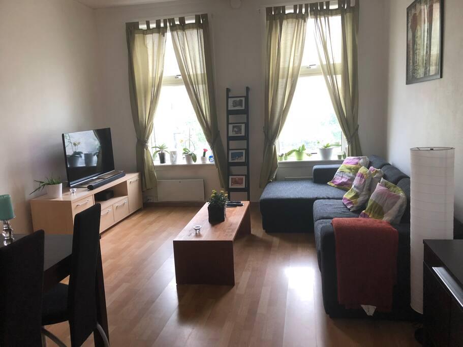 Stue,sofa som enkeltseng
