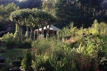 YURTS in the magical Okuti Garden