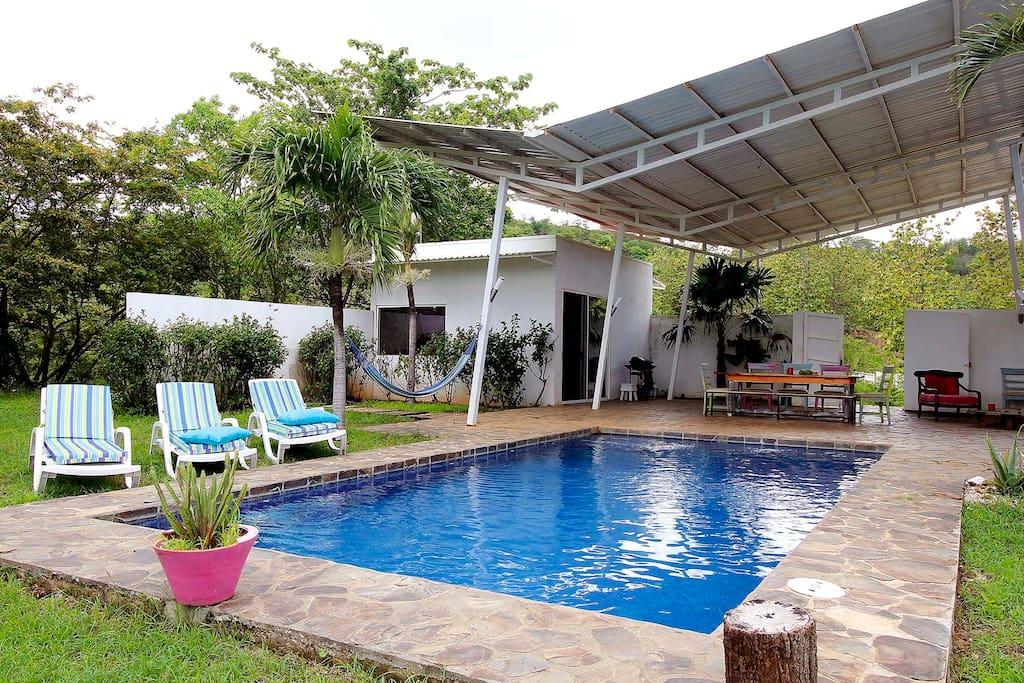 Piscine et terrasse couverte