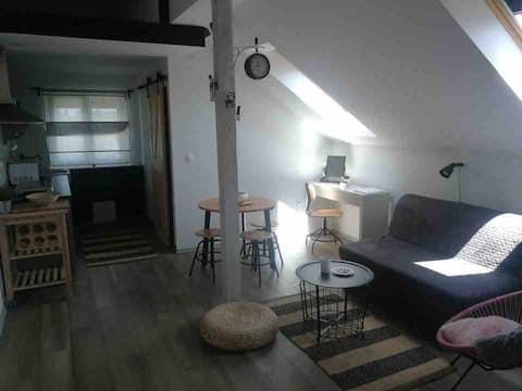 Studio apartment HANA,Plitvička jezera