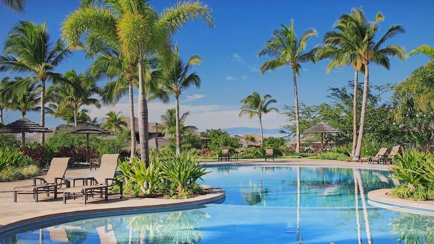 *BARGAIN* Kamilo 431 Luxury Ocean View AC BIKES