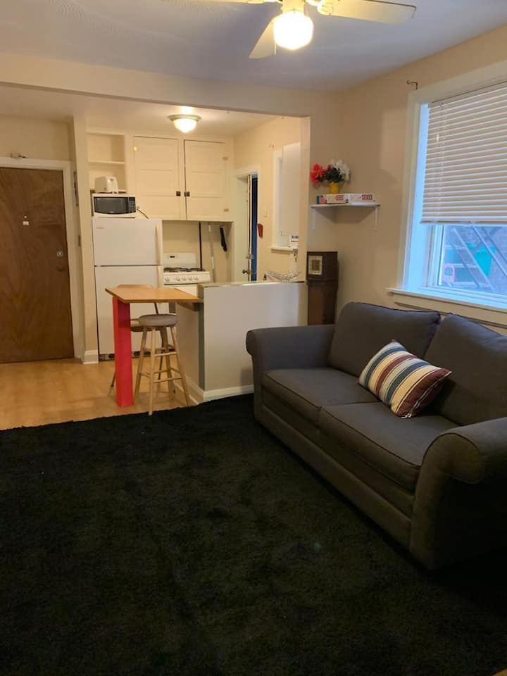 Comfortable apartment in Junction Triangle