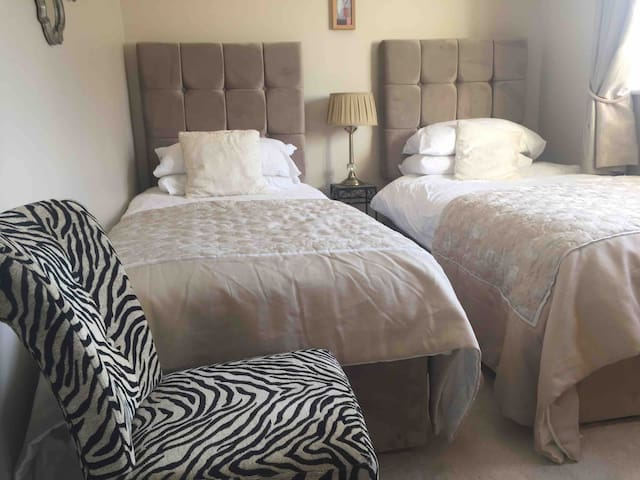 Twin room in city centre 2 min walk from Eyre Sq