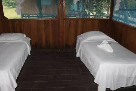 Wimba Jungle Lodge, te conectamos con la jungla