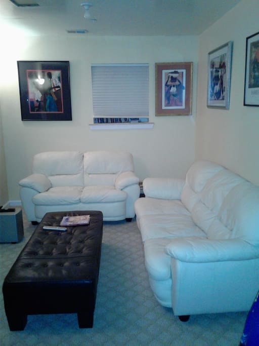 Basement seating for large groups