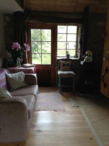 View through back half door towards front door.