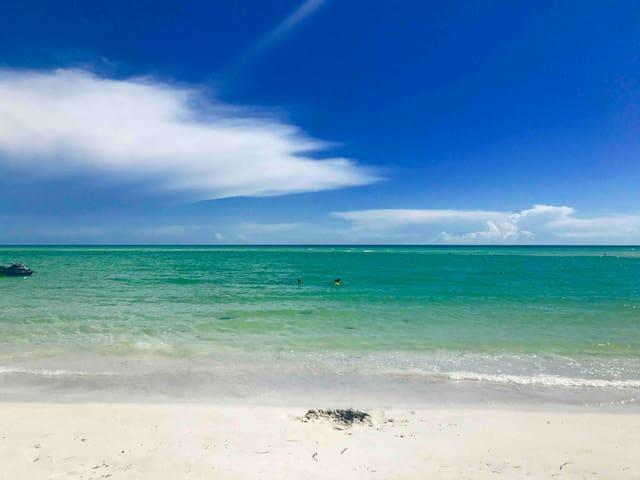 SUN'n'FUN!!! Siesta key Beach
