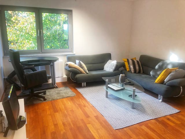 Entire Cozy Clean and Comfortable Apartment
