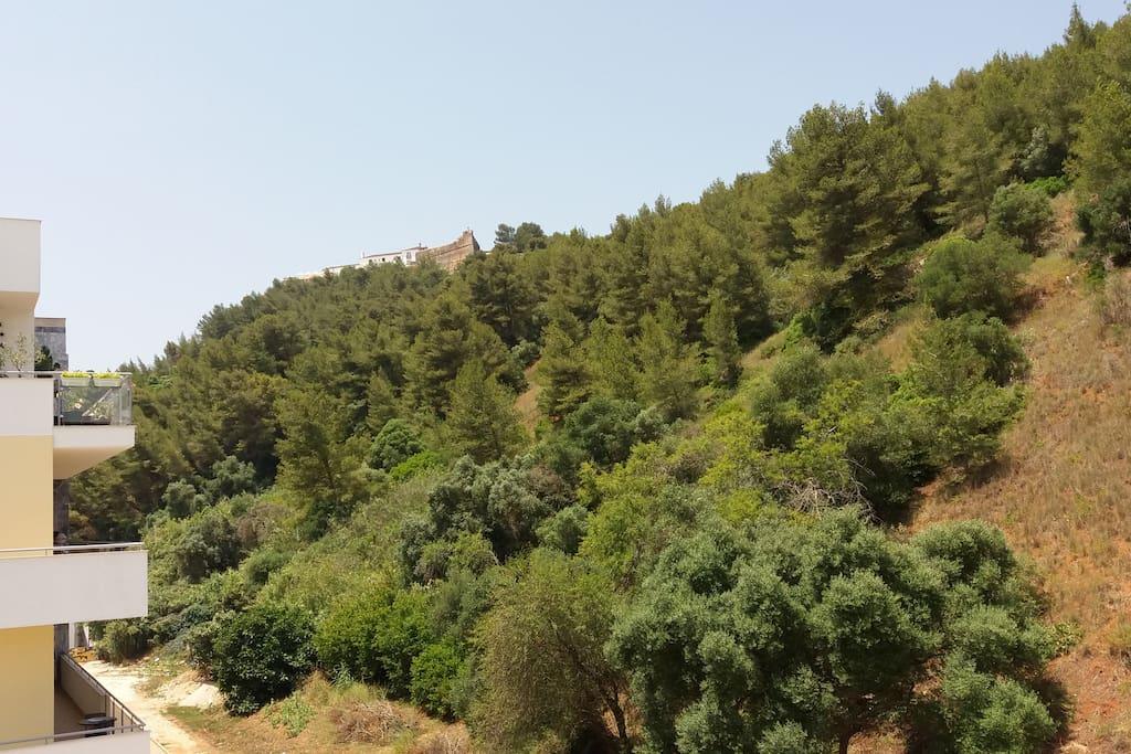 Vista exterior sobre o Forte de São Filipe e os limites do Parque Natural da Arrábida.