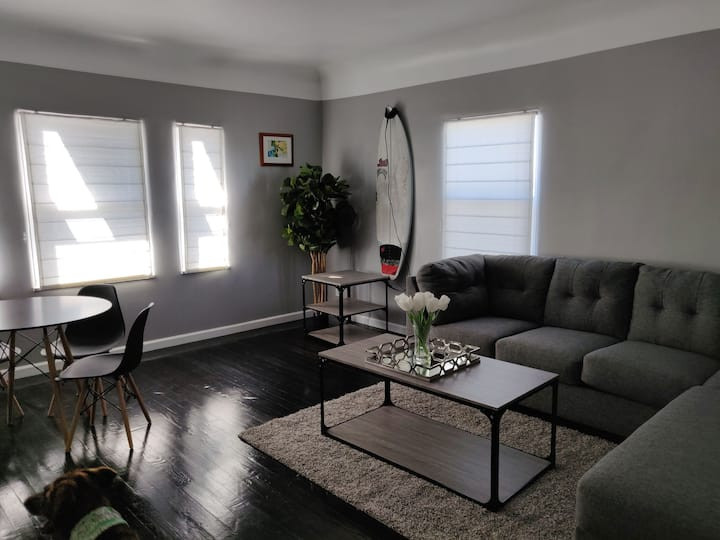 Pet friendly, Stylish large one bedroom Mag 302