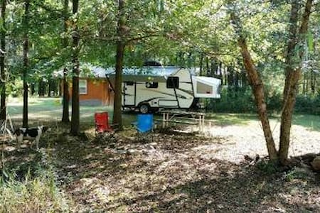 Camper in the woods
