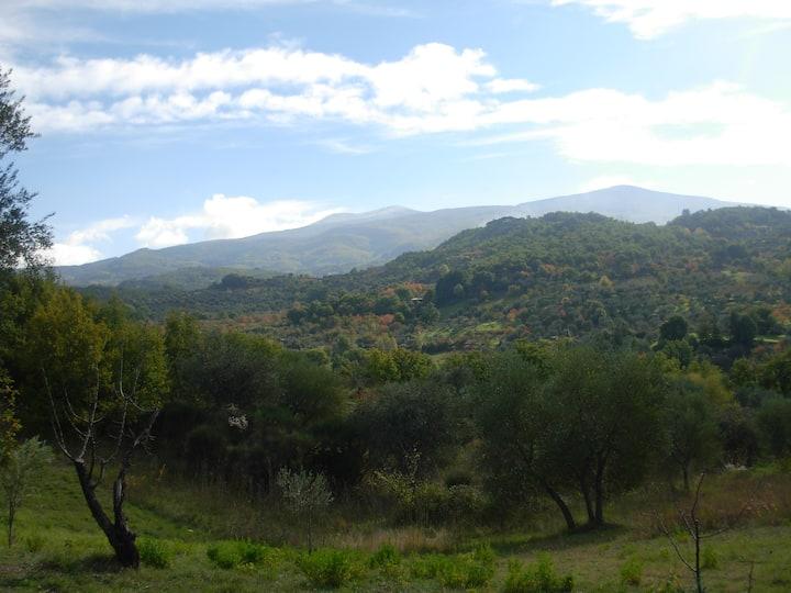 Casa con grande giardino a Salaiola