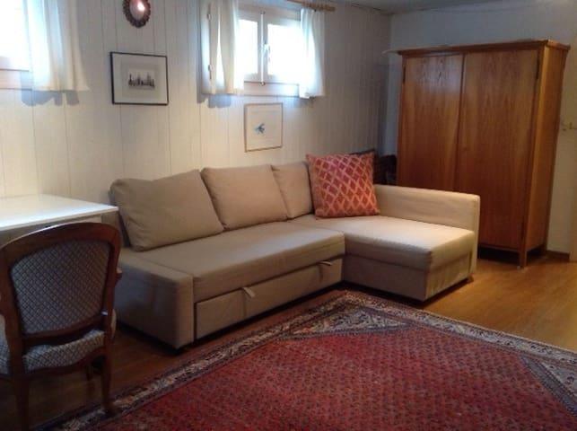 bright, basement room 10 min from Geneva away - Coppet - House
