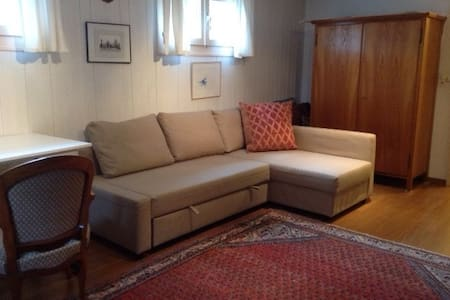 bright, basement room 10 min from Geneva away - Coppet - Hus
