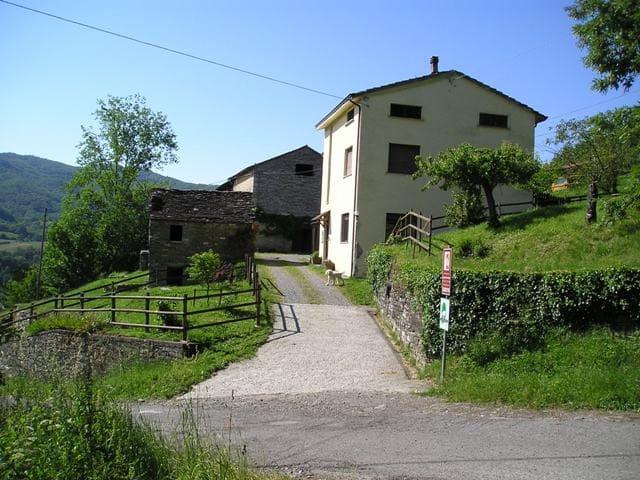 agriturismo la vigna di San pietro - Borgo Val di Taro - Wikt i opierunek