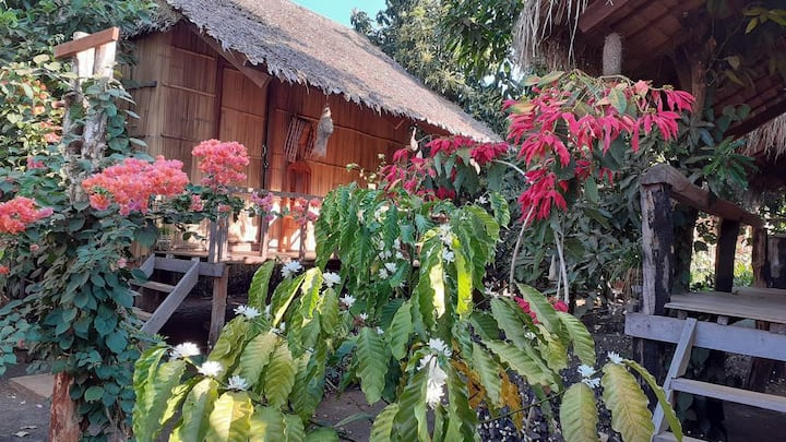 Tribal Village Home stay