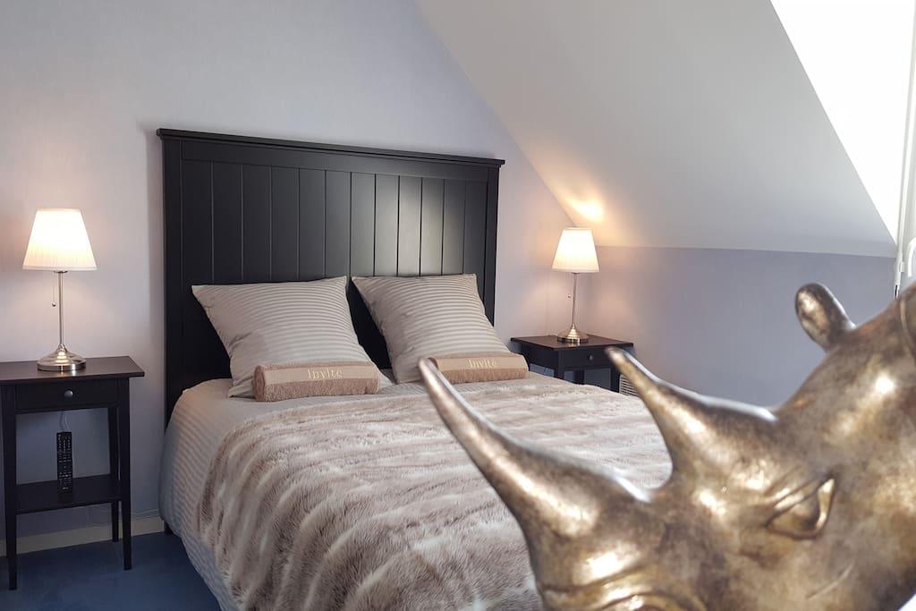 Chambre neuve disposant d'un lit 140/200, d'une literie haut de gamme, de deux chevets et de 2 commodes 3 tiroirs. Décorée avec soin elle saura ravir les amoureux de confort et de literie 5* !