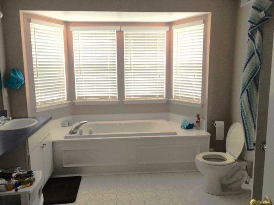 huge bathtub, inviting windows, and great shower (which isn't pictured)