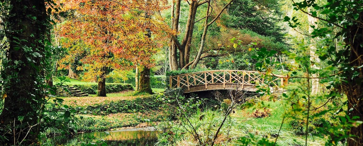 An Autumn day in the gardens.