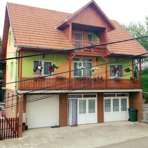 Viczei Szálló - Sic - Haus