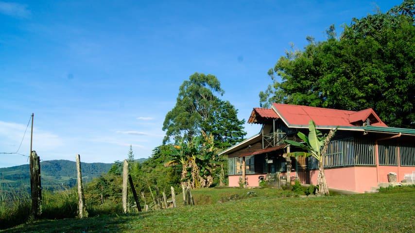 Peaceful paradise in the heart of Costa Rica! - Verbena - Kabin