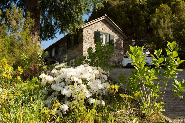 Cedro - A cottage surrounded by nature!