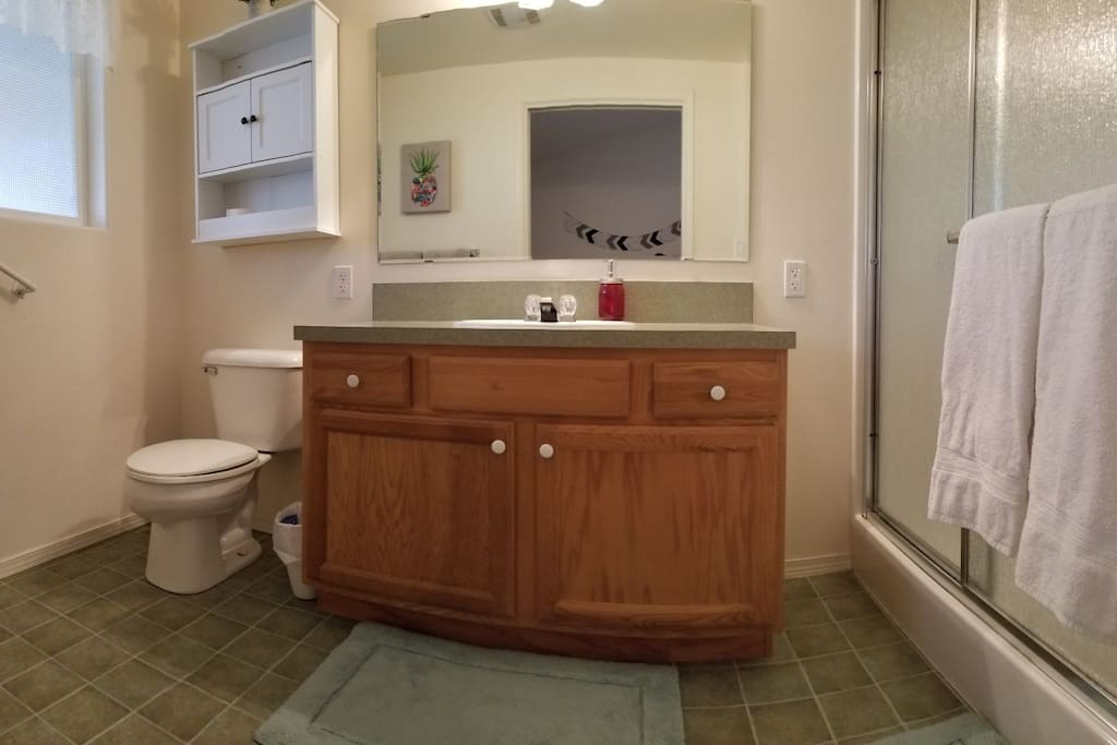 Bathroom is generously sized with double door, stand up shower