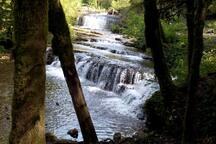 La rivière du Hérisson
