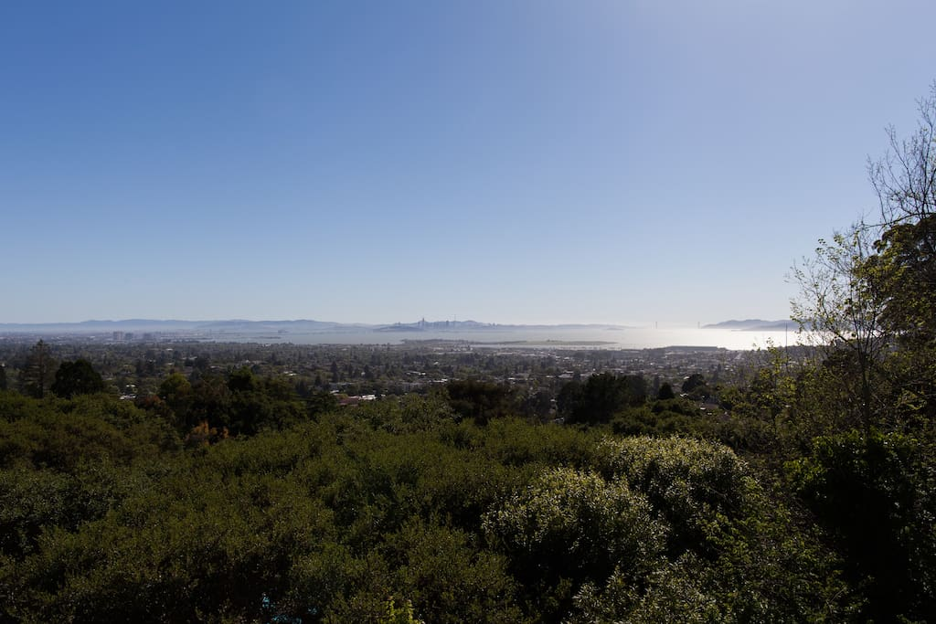 Hard to see but this is the view: park, bay, alcatraz and bridge