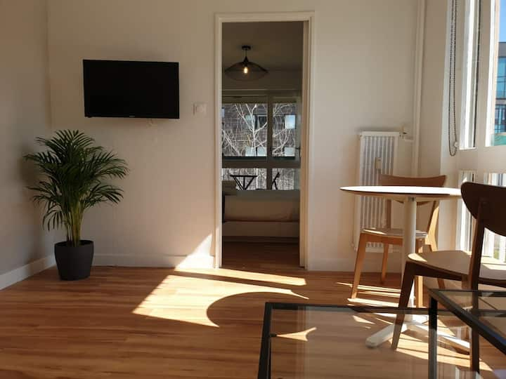 Cozy Appartement Metz-Gare, Pompidou, Ctr Congres (A2)
