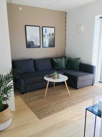 The living room incl. a sofa which can also be a sofabed for two persons.