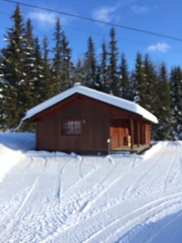 Hyggelig hytte med god standard - Tuddal - Casa