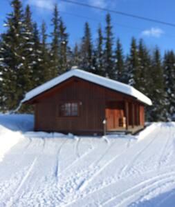Hyggelig hytte med god standard - Tuddal