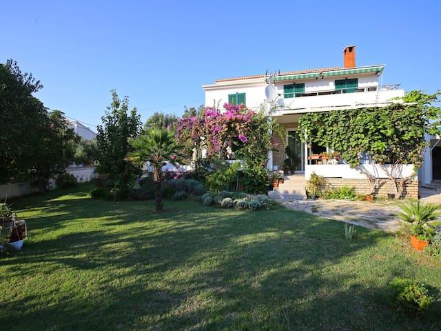"Apartment ""Zita"" for 4 person near beach - Privlaka - Appartement"