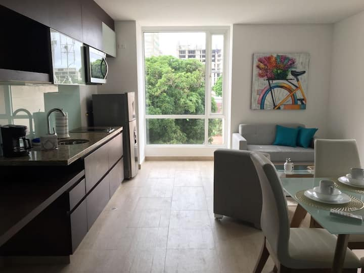 Brand New Hotel-Style Apartment, monthly rent